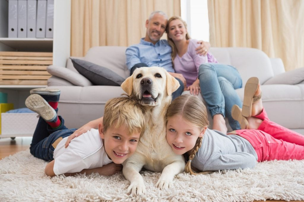 Family with Labrador dog mum dad daughter son pet home happy